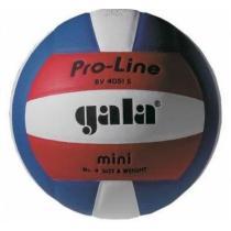Gala BV4051S Training Mini volejbalový míč