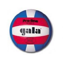 Míč OFFICIAL COLOUR S volejbal