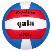 Volejbalový míč Gala BV5011S